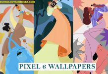 Download Google Pixel 6 Official Wallpapers Right Now!